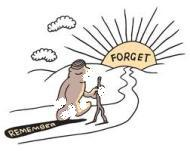 Mengqadha Shiyam (Puasa) Yang Terlupakan Selama Sepuluh Tahun