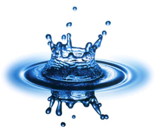 Najiskah Air Yang Terkena Kotoran Cicak?