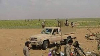Pasukan Yaman Tewaskan 30 Pemberontak Syiah Houti di Hujjah